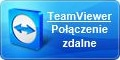 usługi IT Team viewer